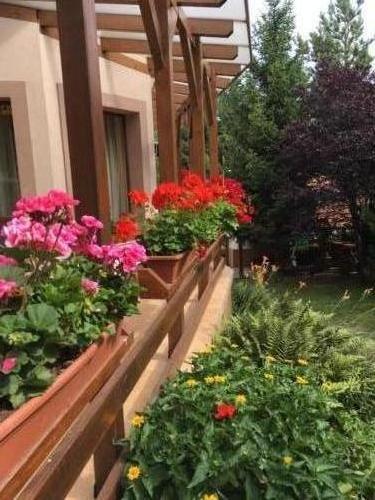 belle-aire garden